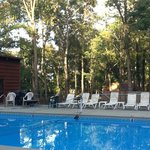 Our pool taken this week as fall sets in.
