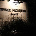 no monkeys here