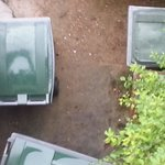 vue sur les poubelles chambre 103