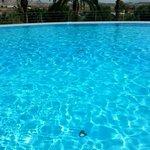 Beutiful pool (30,5 degrees celcius)