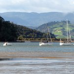 Mercury Bay - low tide