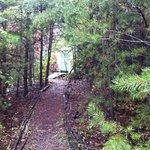 Path to yurt