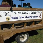 Wagon tour  of the vineyards