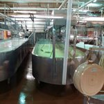 Free tour of how they make their cheese.
