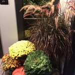 Fall Decor at the Front Door
