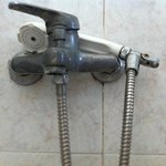 Hand held shower