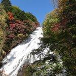 観瀑台から、紅葉の見ごろ始まり
