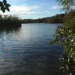 Bolam Lake Country Park