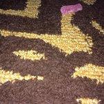 Candy on carpet - gross