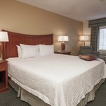 Hampton Inn Hattiesburg King Room