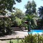 La piscine, le carbet