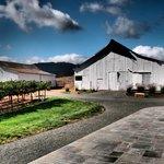 gamble winery