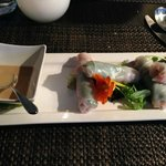 Chilled Vegetable Spring Rolls with Peanut Sauce