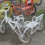 Любовь к трициклам прививается с детства