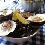 zeeuwse oesters: the best.