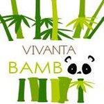 VIVANTA BAMBOO
