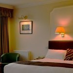 Spacious Executive Rooms