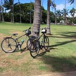 stopped at a park on our ride to Diamond Head Crater