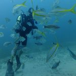Divemaster with his friends