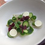 Oyster Ceviche with forzen yogurt slivers