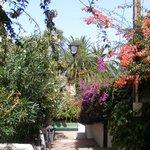 Botanische tuin op loopafstand van het hotel