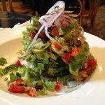 Tchop-n-Napoleon Salad