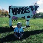 Harbes Farm!