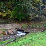 Creek & waterfall