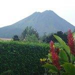 Vista del Volcán desde la habitación