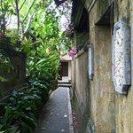 Narrow walkway garden