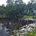 Wonderful experience at Rothman Manor!