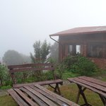 Bathed in mist -- Our cottage