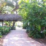 Side Entrance/Garden
