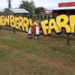 Dewberry Farm entrance