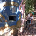 """il percorso """"avventura"""" nel bosco per i bimbi"""