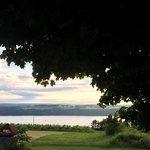 View from Leidenfrost Vineyards