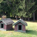 The Dog Houses