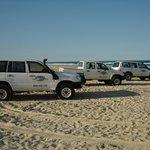 Beach or Highway?!