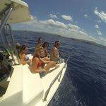 Dolphin Safari & Snorkeling