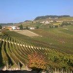 Photo de Agriturismo Tra Sole e Vigne
