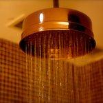 Copper Rain Shower Head