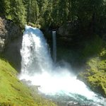 McKenzie River National Recreation Trail