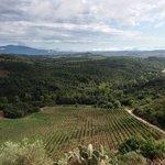Around Montalcino