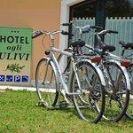 noleggio gratuito biciclette