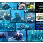 Journée jeunes plongeurs !!!