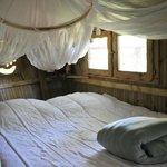 Cabane des Lémuriens