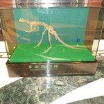 Dinossauro à porta do quarto