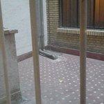 room  con vistas a la calle