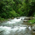Camino a los laureles,en la Fortuna, se encuentran muchos ríos...