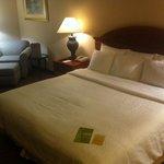 romm Hilton Gardenn Inn
